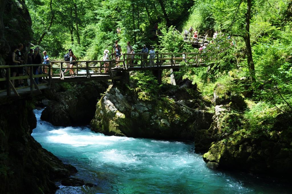 Les Gorges Vintgar Slovénie