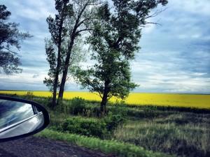 Countryside Hungary