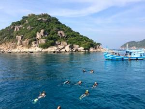 Ko Tao diving, Thailand