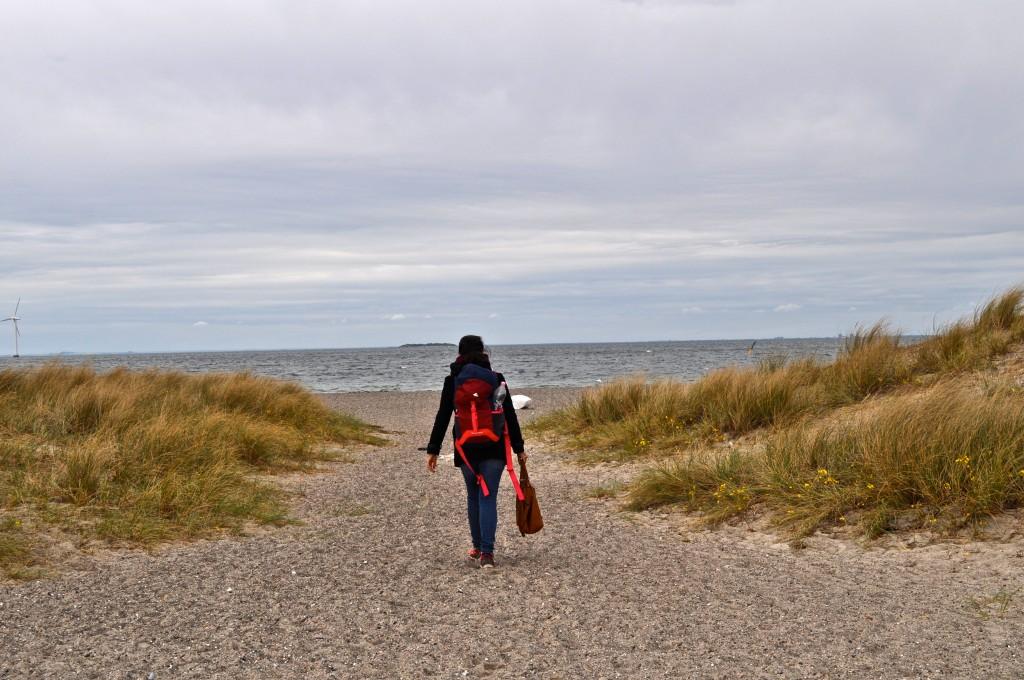 La plage d'Amager, Copenhague