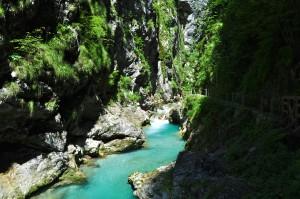 Tolminka gorges