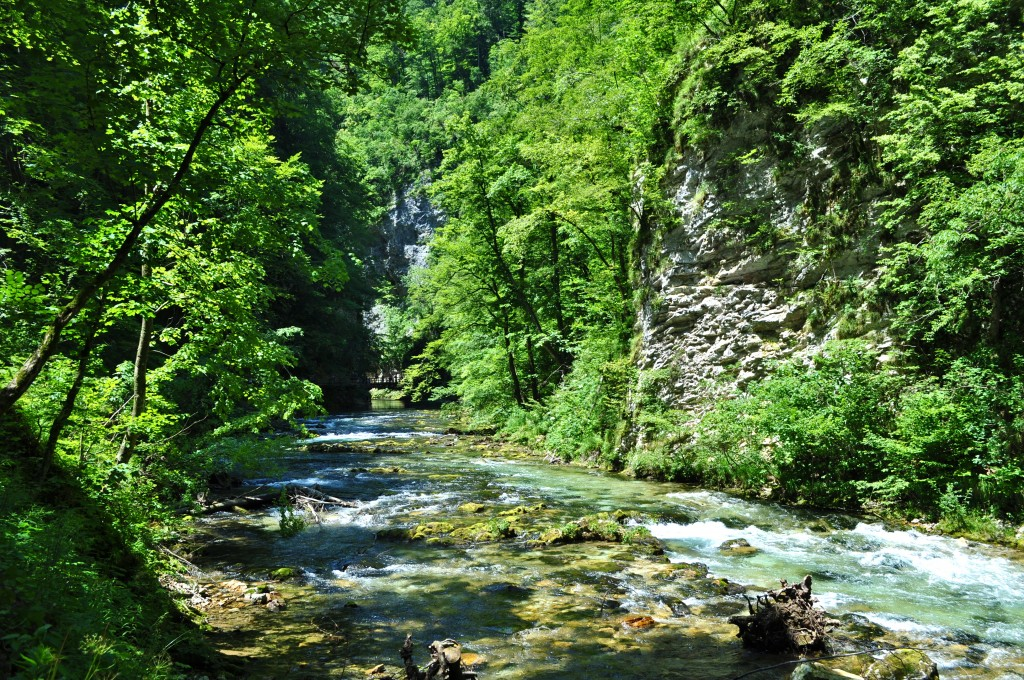 Vintgar Gorges Bled lake Slovenia