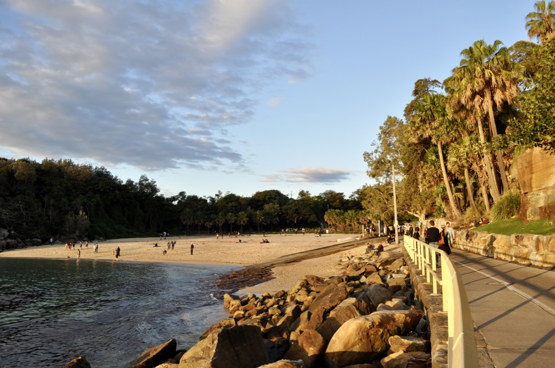 Manly-beaches