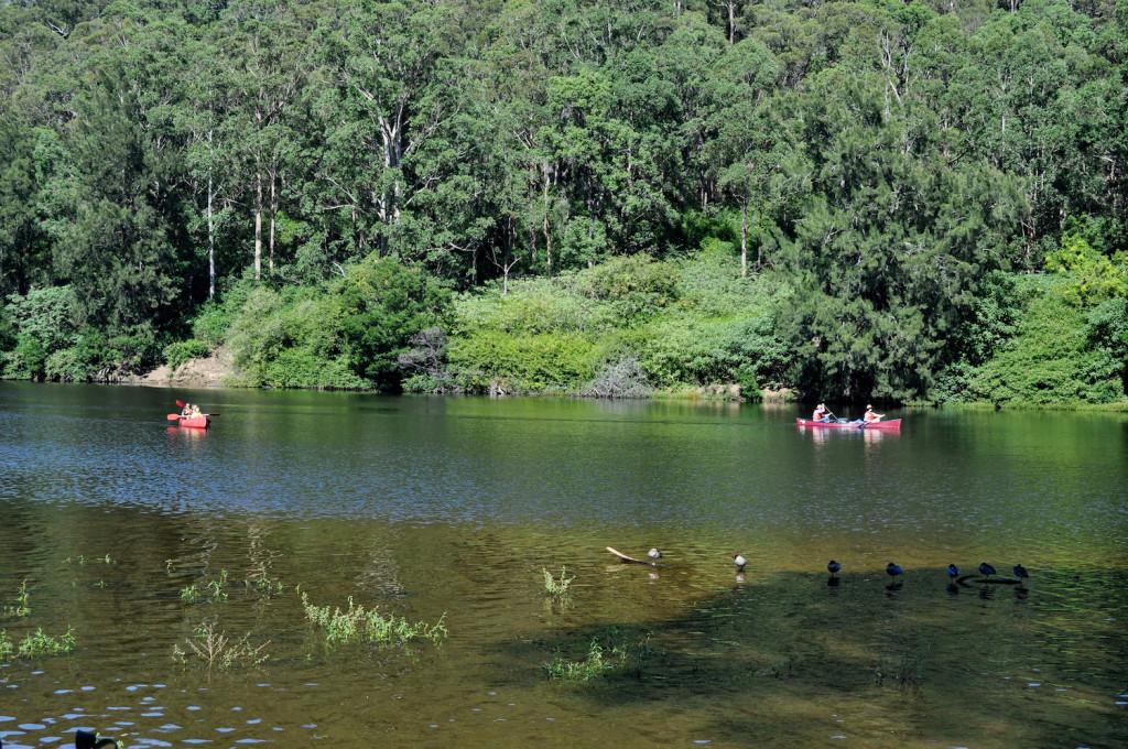 Kangaroo Valley - Kayaking or Canoeing on the river