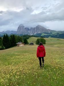 Alpe Di Suisi Dolomites Italie