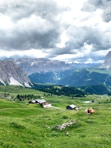 Mt Seceda Dolomites Italy