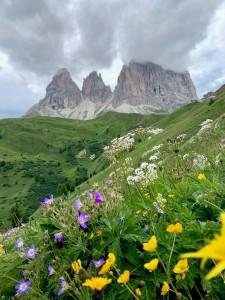 Passo Sella Dolomites Italy