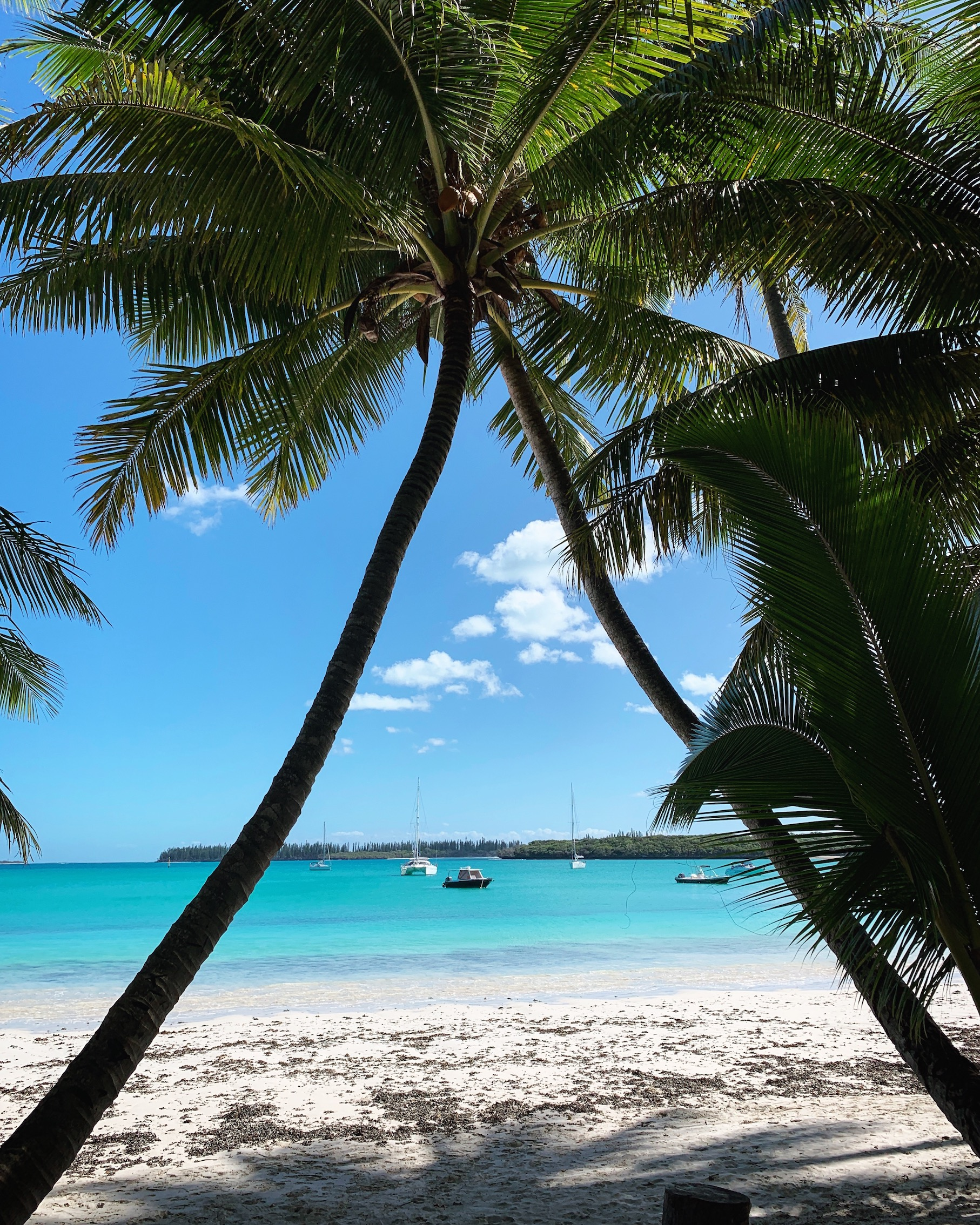 Ile des Pins Kuto Beach