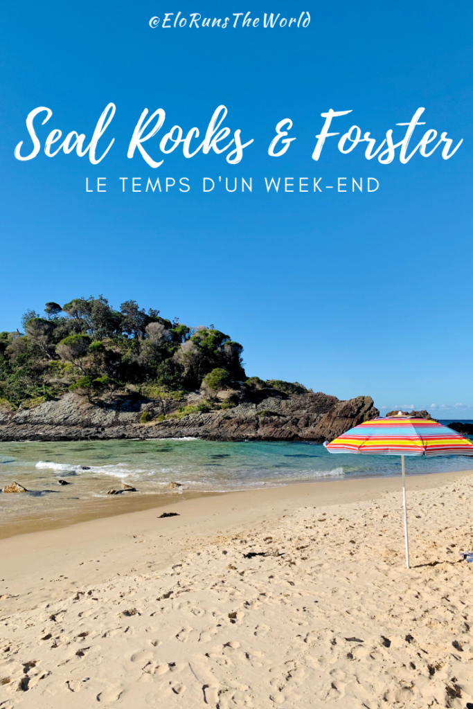 Seal Rocks & Forster Blog Article